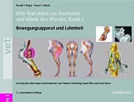 Bild Text Atlas zur Anatomie und Klinik des Pferdes PDF