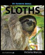 My Favorite Animal: Sloths