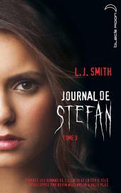 Journal de Stefan 3