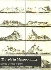 Travels in Mesopotamia: Volume 1