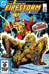 The Fury of Firestorm (1982-) #19