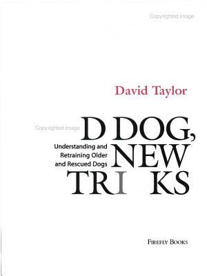 Old Dog, New Tricks