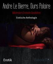 Vollstreckers Erotische Geschichten: Erotische Anthologie