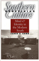 Redefining Southern Culture PDF