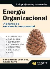 Energía organizacional: 7 pilares de excelencia empresarial
