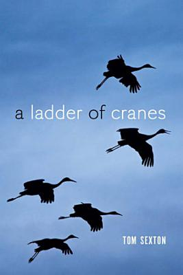 A Ladder of Cranes