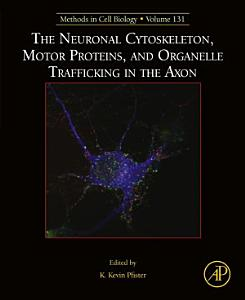 The Neuronal Cytoskeleton  Motor Proteins  and Organelle Trafficking in the Axon