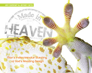 Made in Heaven Book