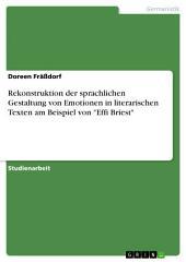 """Rekonstruktion der sprachlichen Gestaltung von Emotionen in literarischen Texten am Beispiel von """"Effi Briest"""""""