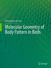 Molecular Geometry of Body Pattern in Birds