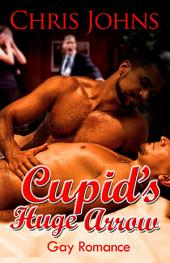 Cupid's Huge Arrow: Gay Romance