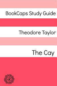 Study Guide  The Cay Book