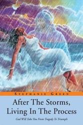 After The Storms Living In The Process Book PDF