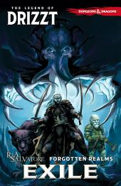 Dungeons & Dragons: The Legend of Drizzt, Vol. 2: Exile