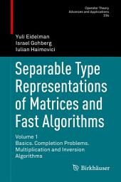 Separable Type Representations of Matrices and Fast Algorithms: Volume 1 Basics. Completion Problems. Multiplication and Inversion Algorithms