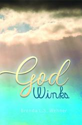 God Winks Book PDF