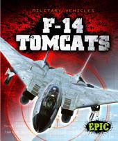 F-14 Tomcats
