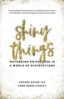 Shiny Things Book