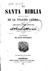 La Santa Biblia: traducida al español de la vulgata latina y anotada conforme al sentido de los santos padres y espositores católicos, Volumen 5