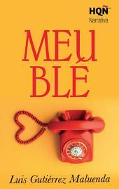 Meublé (Narrativa)