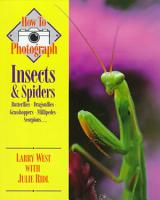 How to Photograph Insects   Spiders PDF