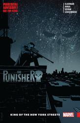 The Punisher Vol 3 Book PDF