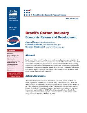 Brazil  s Cotton Industry