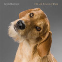 The Life and Love of Dogs PDF