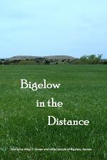 Bigelow in the Distance