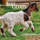 Baby Goats Calendar 2017