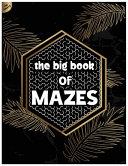 The Big Book of Mazes PDF