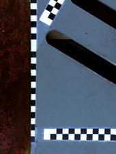 Iconographia botanica, seu, Plantae criticae: Icones plantarum rariorum et minus rite cognitarum, indigenarum exoticarumque, iconographia et supplementum, imprimis ad opera Willdenowii, Sehkuhrii, Personii, Roemeri et Schultesii, delineatae, et cum commentario succineto editae, Bände 5-6
