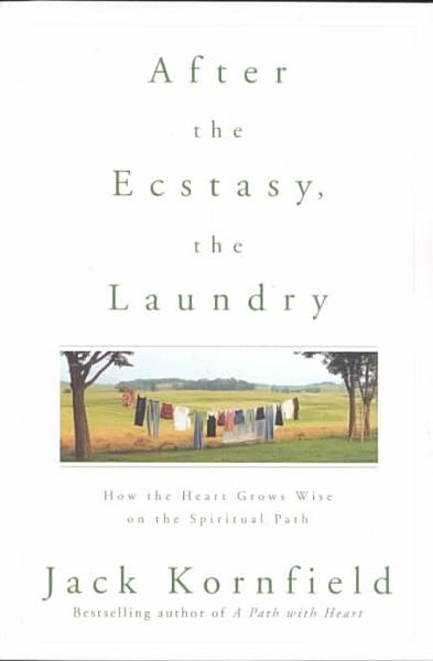 After the Ecstasy, the Laundry