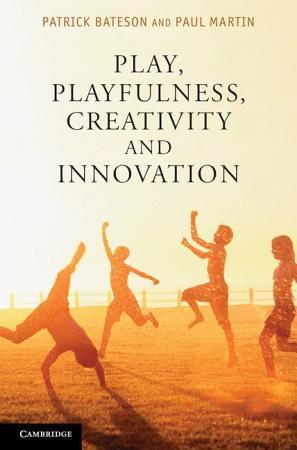 Play  Playfulness  Creativity and Innovation PDF