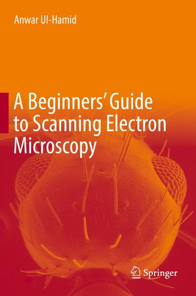 A Beginners Guide To Scanning Electron Microscopy