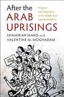 After the Arab Uprisings PDF