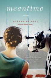 Meantime: A Novel