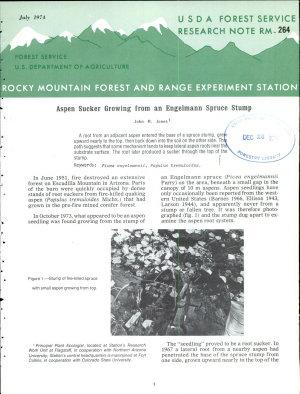Aspen Sucker Growing from an Engelmann Spruce Stump