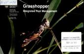 Grasshopper integrated pest management