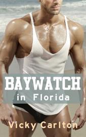 Baywatch in Florida. Erotikgeschichte