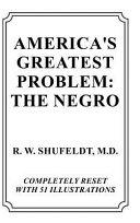 America s Greatest Problem  The Negro
