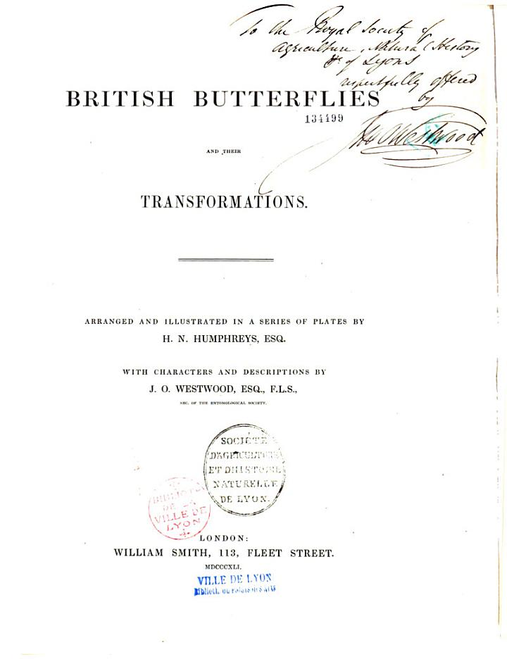 British Butterflies and Their Transformations