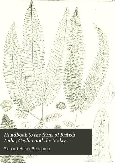 Handbook to the Ferns of British India  Ceylon and the Malay Peninsula PDF
