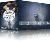 Falling For A Wolf Box Set (BBW Werewolf / Shifter Romance)