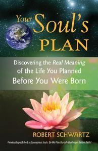 Your Soul s Plan PDF