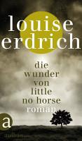 Die Wunder von Little No Horse PDF