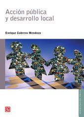 Acción pública y desarrollo local