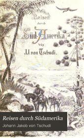 Reisen durch Südamerika: Bände 3-4