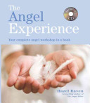 The Angel Experience Book