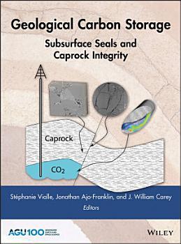 Geological Carbon Storage PDF